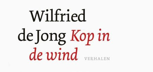 Gelezen: Kop in de wind (Wilfried de Jong)